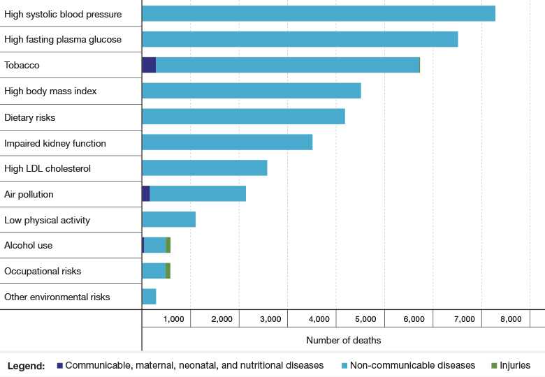Figure 1: Principal Risk Factors for Mortality in Israel, 2019