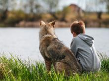 Dog_and_a_kid_sitting_on_the_grass