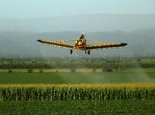 airplane spraying pesticides over field