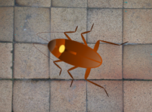 animation of roach on floor