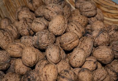 A pile of wallnuts