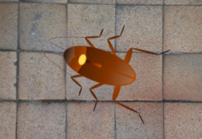 animation of roach on floor