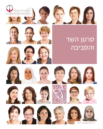 image of cover of 2015 breast cancer publication